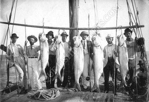 Samuel Jones 1880 130lb tarpon