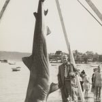 zane-grey-fishing-tuna-marlin-swordfish-shark-vintage-photo-picture (72)